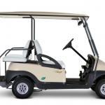 Carrinho de golfe elétrico a venda